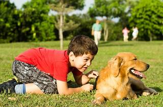 SPCA World Animal Day 2015