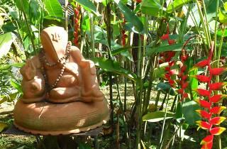 Yogshakti's Integrative Yoga Teacher Training Course
