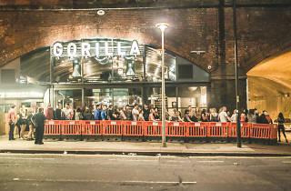 Gorilla, Manchester, Entrance