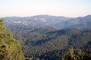 El parc de Collserola i la ciència dels ciutadans