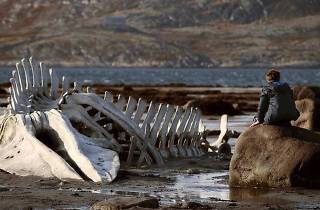 Leviathan (d'Andrey Zviaguintsev)