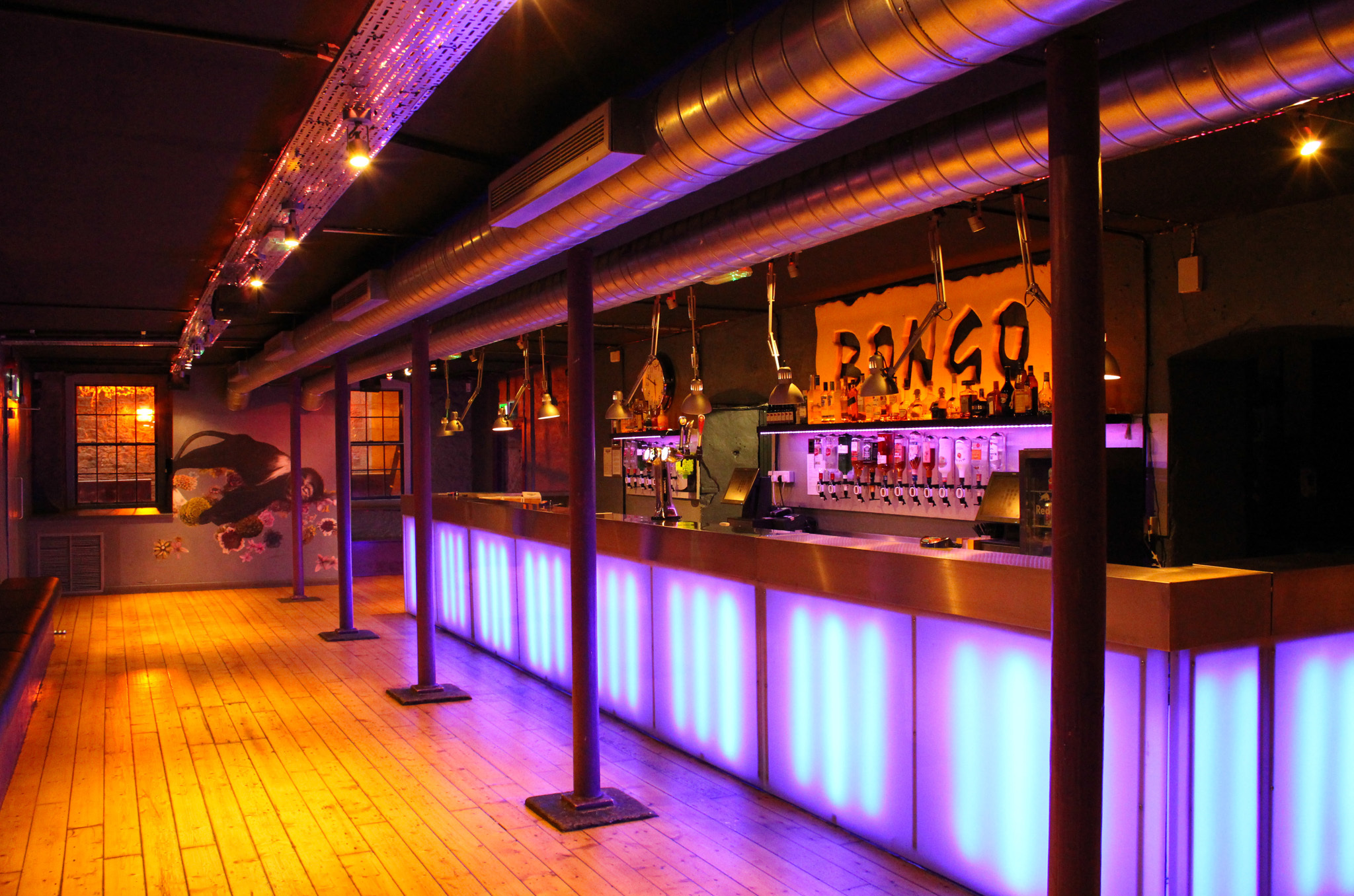 The Bongo Club