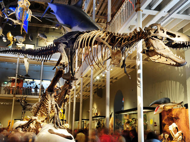 9 brilliant museums in Edinburgh