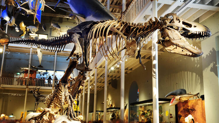 9 can't-miss museums in Edinburgh