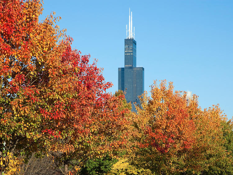 The most beautiful Chicago parks