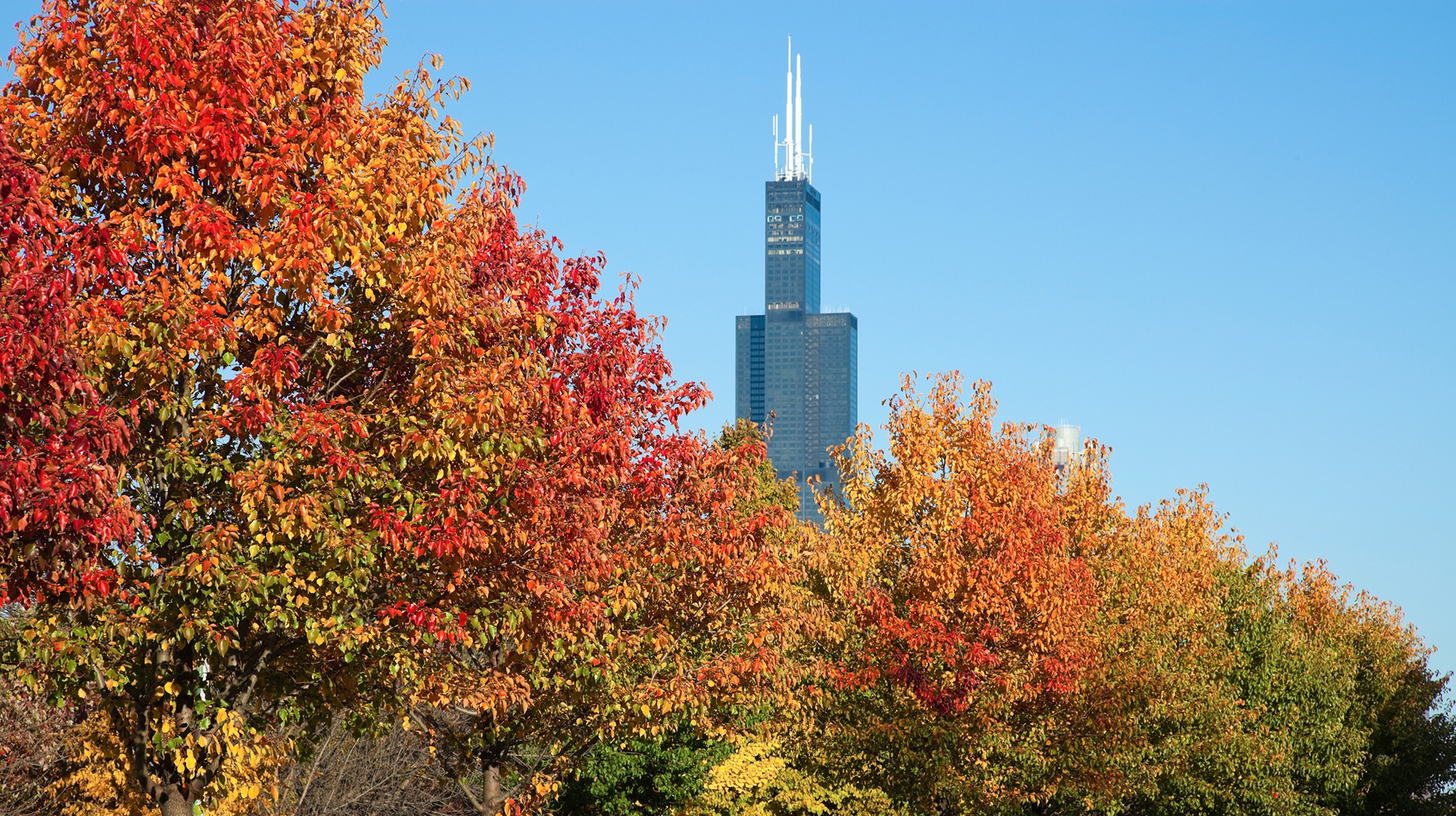 33 reasons fall in Chicago is the best