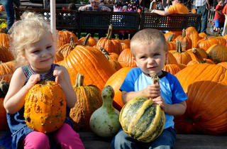 Bengston's Pumpkin Farm