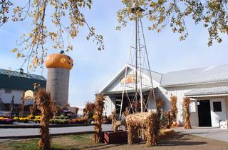 Goebbert's Pumpkin Farm & Garden Center