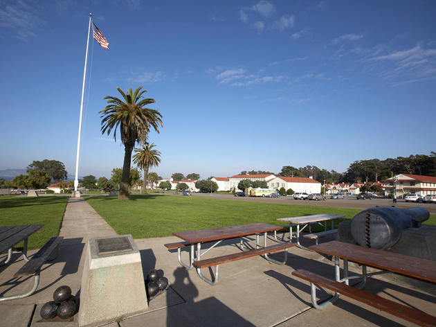 Picnic in the Presidio