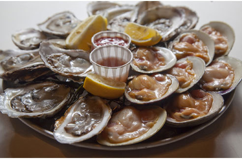 Oysters at Grand Central Oyster Bar