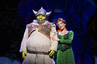 Shrek and Princess Fiona