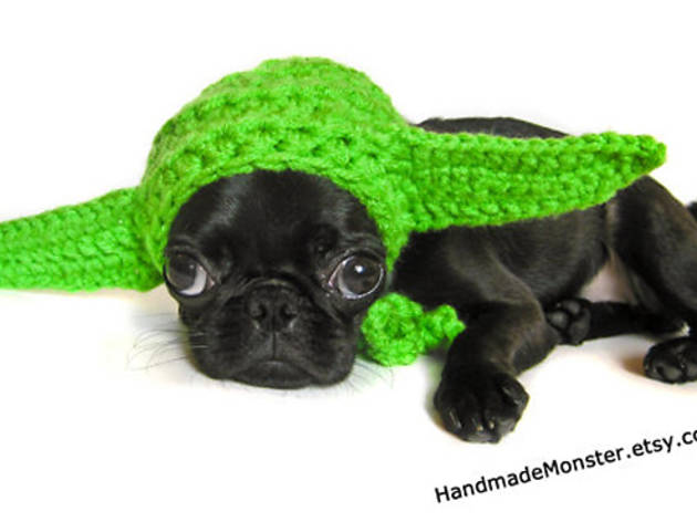1/16 Yoda hat $20 at etsy.com  sc 1 st  Time Out & Dog Halloween costumes for small and large dogs