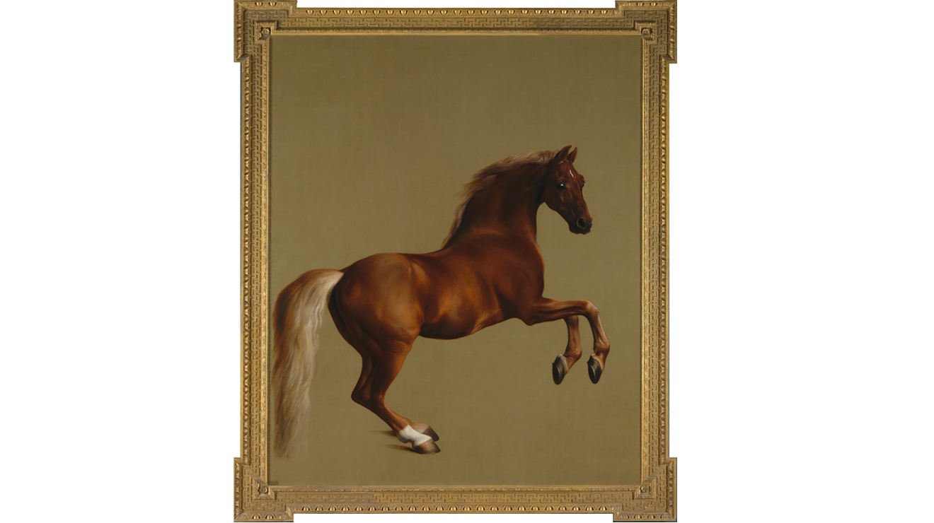 'Whistlejacket' - George Stubbs