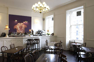 The Dogs, Restaurants, Cheap, Edinburgh