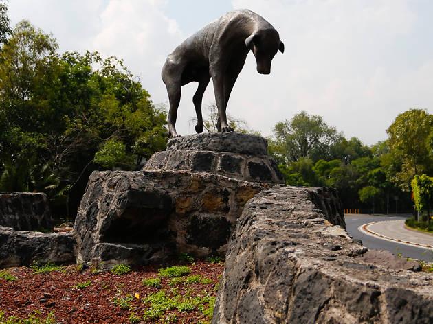 Estatua al perro callejero