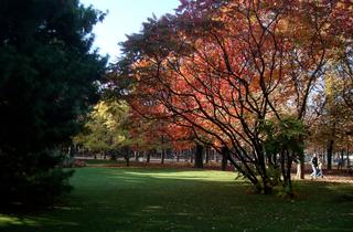 Jardin du Luxembourg (CC BY 2.0 © Michel Ethève)