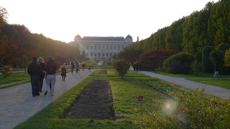 Jardin des plantes (CC BY 2.0 © jean-louis Zimmermann)