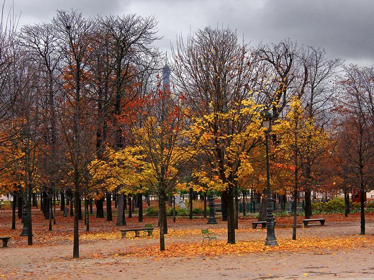 10 choses à faire cet automne