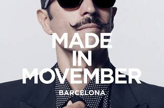 Made in Movember 2014