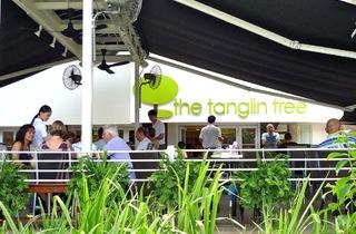 The Tanglin Tree
