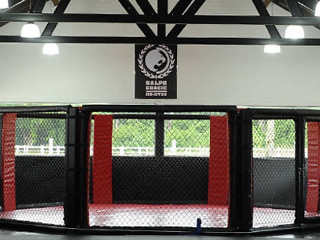 The Stable – Mixed Martial Arts