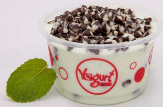 Yogurt Place