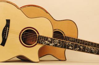 Maestro Guitars & Ukuleles