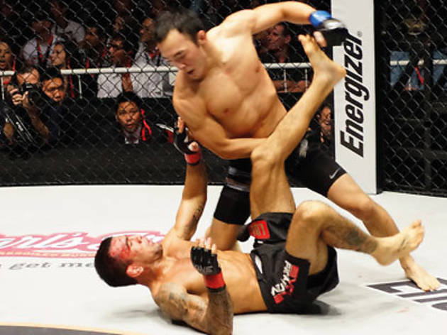ONE Fighting Championship: Total Domination