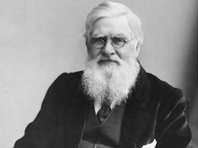 Island Adventurer: Alfred Russel Wallace and the Quest for the Origin of Species