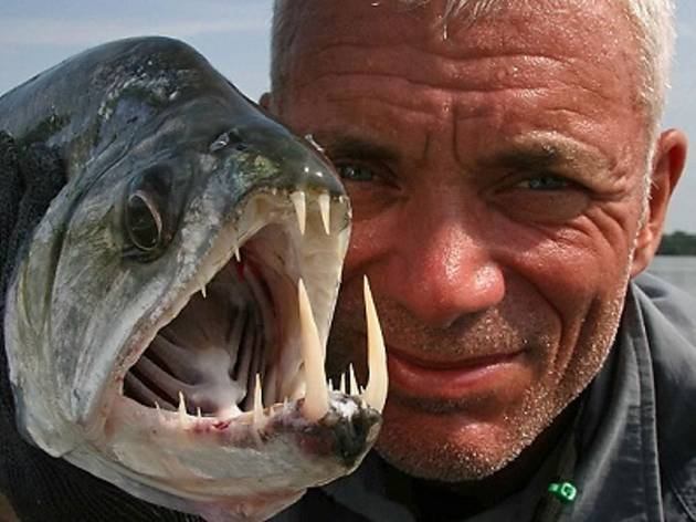 River Monsters Live in Asia