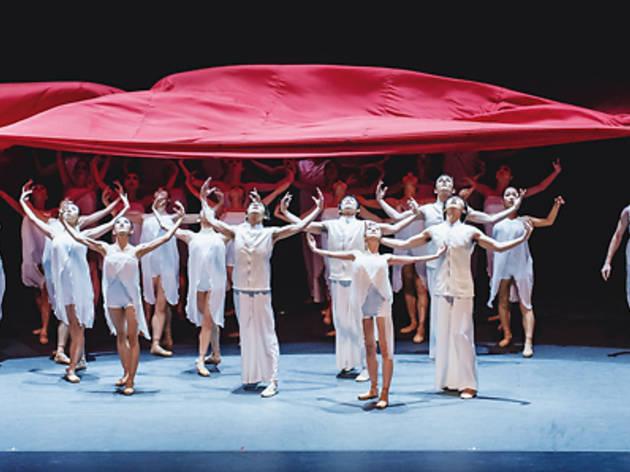 Ballet Under the Stars 2014