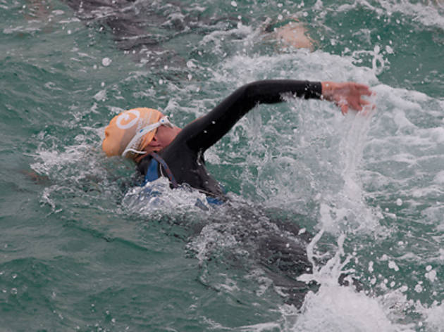 Singapore Swim Stars Open Water