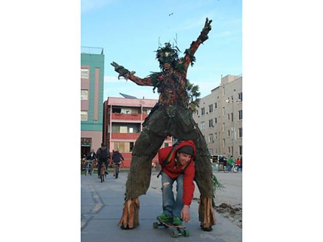 The Tree Man of Venice