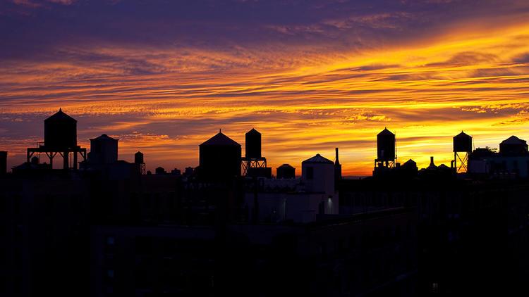 Photograph: Courtesy Creative Commons/Flickr/Nicholas Noyes