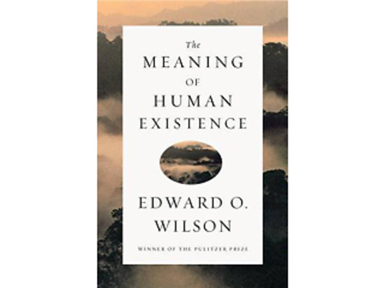 The Meaning of Human Existence by Edward O. Wilson (Liveright, $23.95)