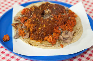 Taco de riñón con longaniza (Foto: Alejandra Carbajal)