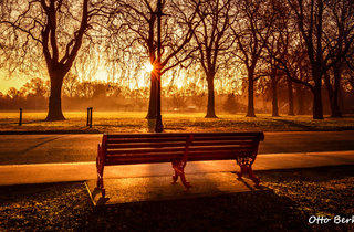Battersea Park sunrise