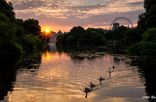 St James's Park at daybreak