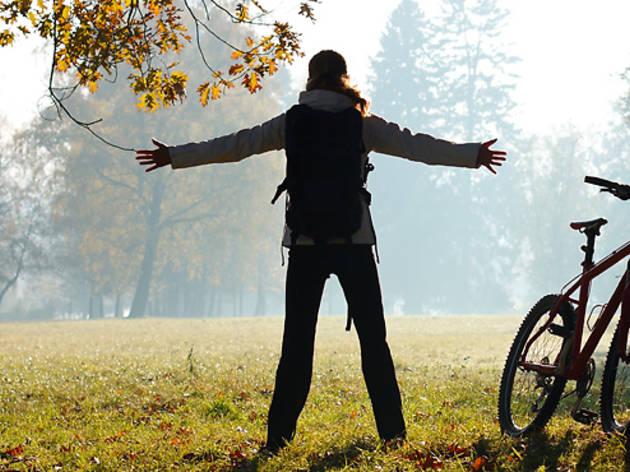 Les balades à vélo sans la sueur