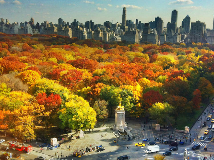25 beautiful photos of fall in NYC