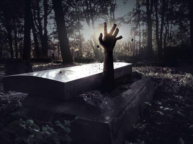 Fiestas de Halloween y Día de Muertos en la CDMX