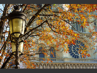 40 photos d'automne à Paris
