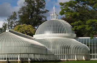Glasgow Botanic Gardens, Attractions, Free, Glasgow
