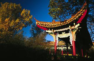 Chinagarten Zürich Chinese gardens