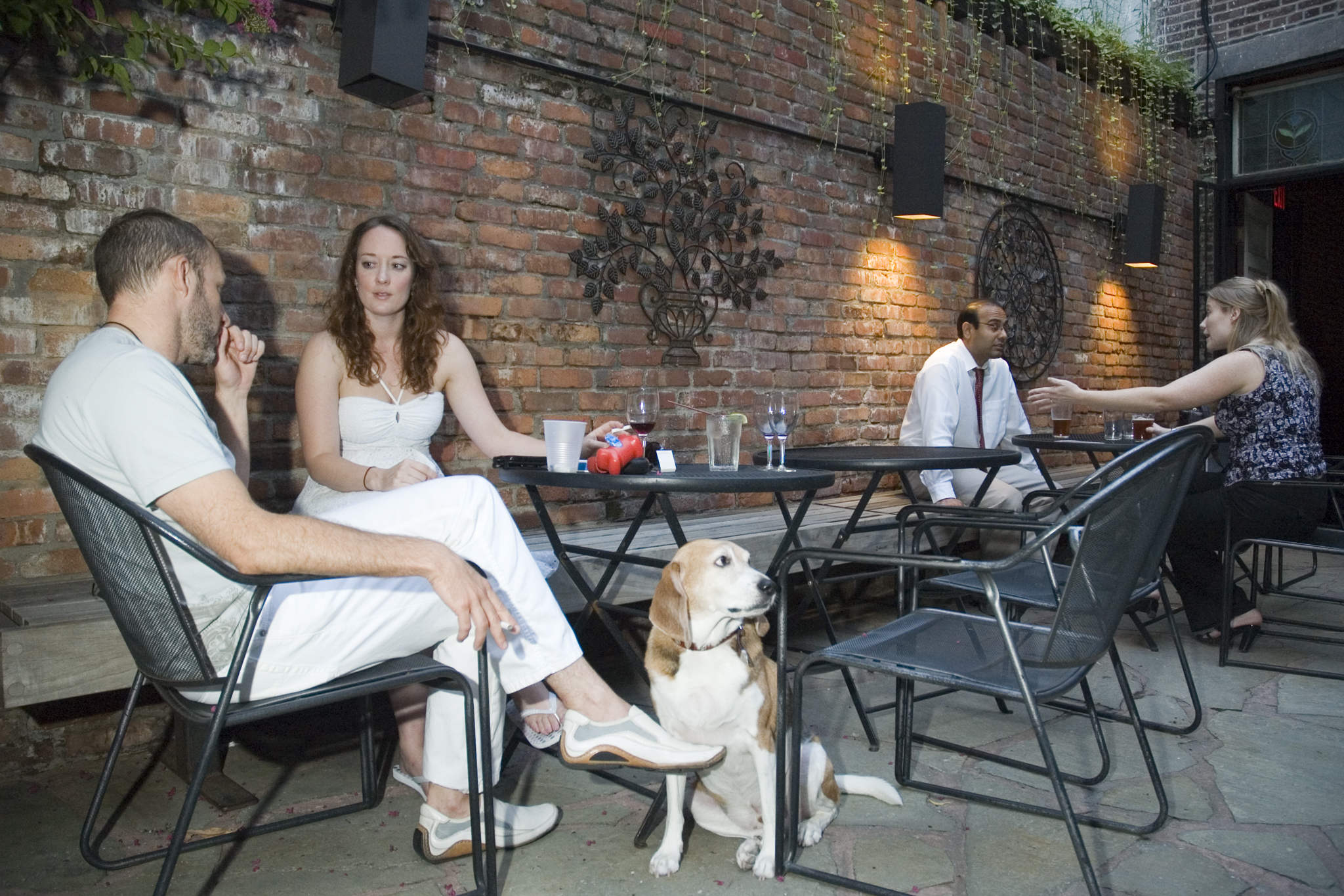 The best dog-friendly bars