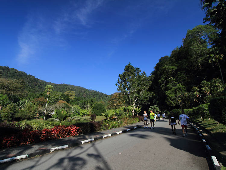 For the budget traveller: Free tours by Penang Global Tourism