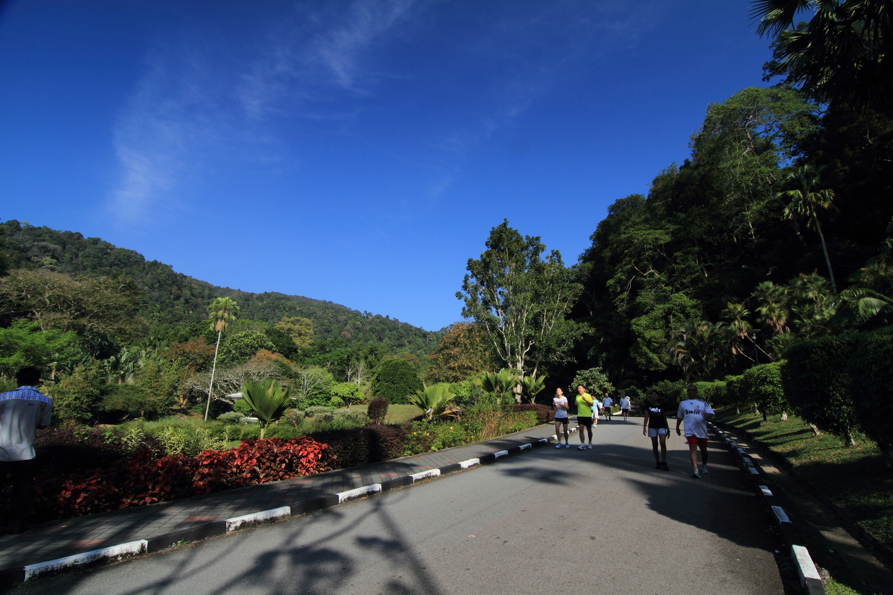 Best things to do outdoors in Penang