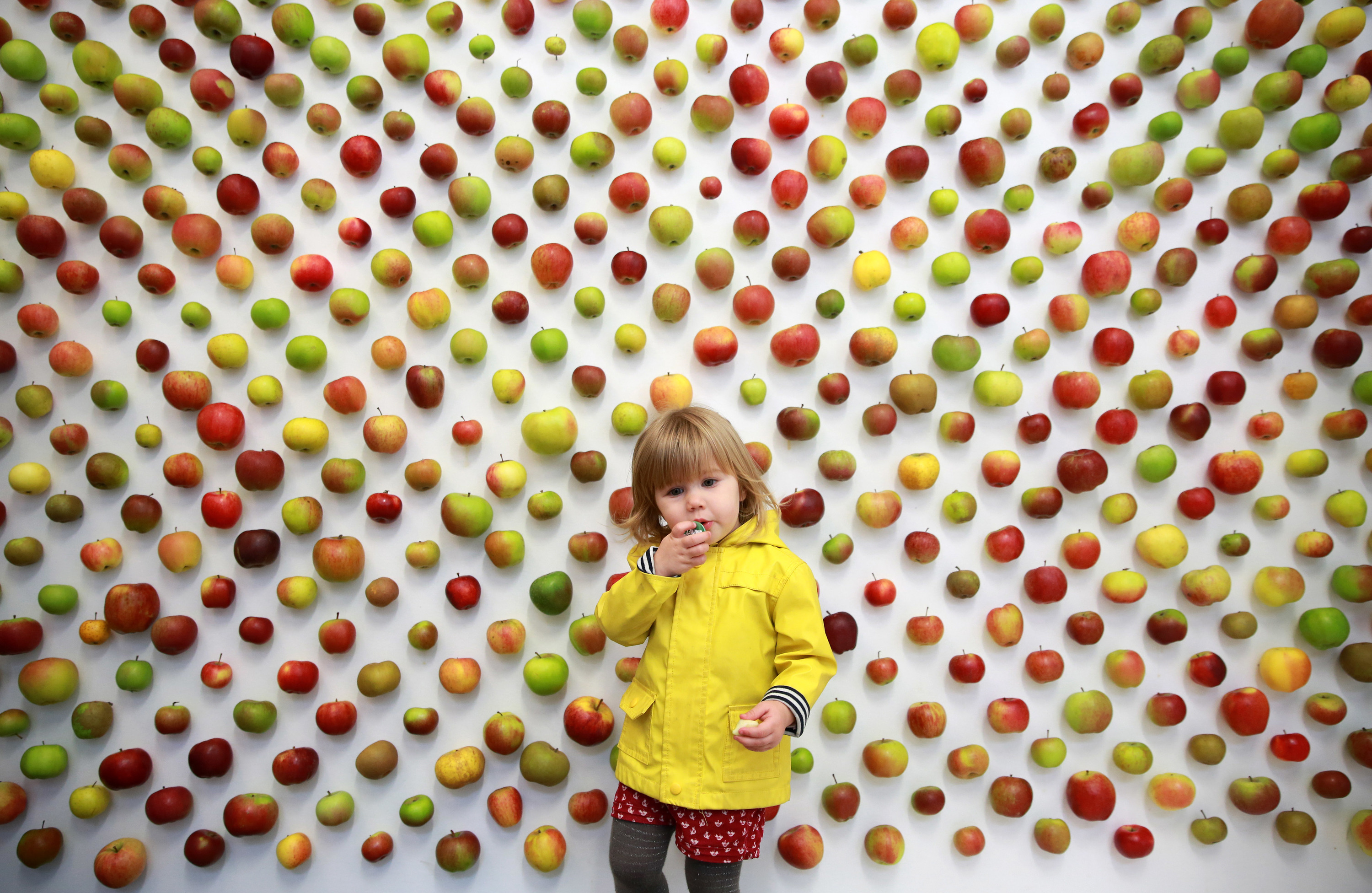 Borough Market, The Real Apple Store, Apple Day
