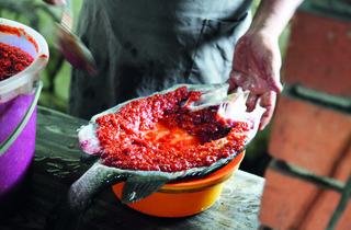 Pak Hassan's Ikan Bakar & Nasi Lemak