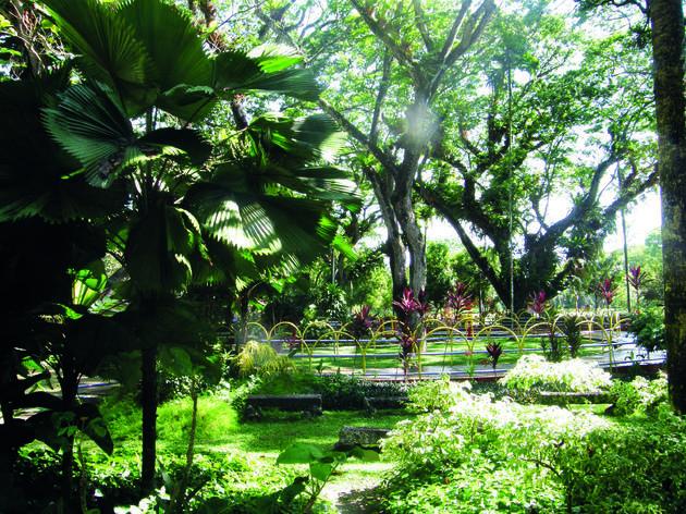 Penang Municipal Park